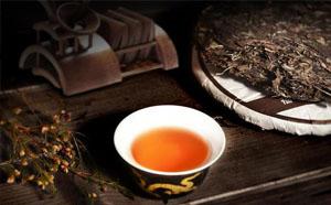 景星凤凰窝古树茶受欢迎的原因