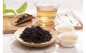 乌龙茶|石古坪乌龙茶