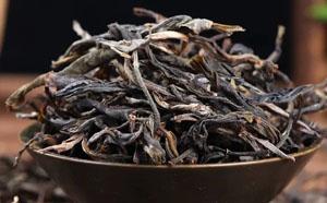 吴跃辉:谈谈普洱茶的苦涩