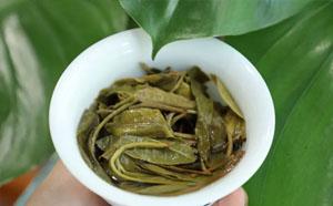 我用8年普洱茶做茶经验告诉你,怎么喝懂真正的好普洱茶!